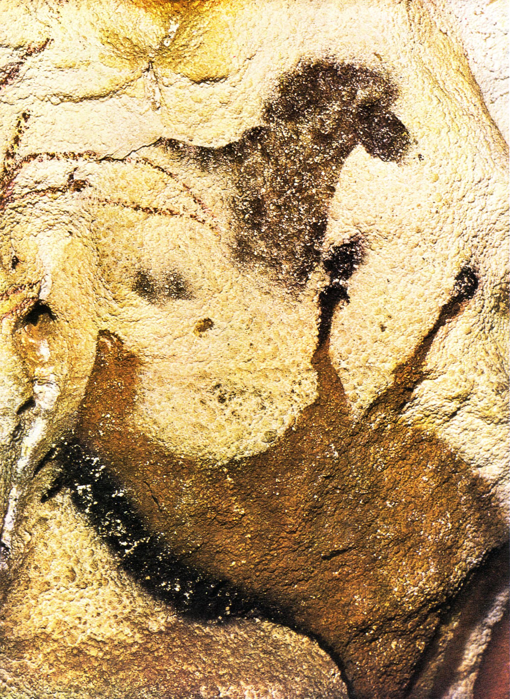 1000+ images about Paleolithische grot/rots tekeningen on